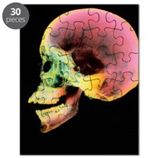 Coloured X-ray of a human skull seen from t Puzzle