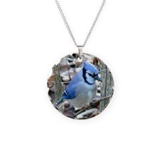 Beautiful BlueJay Necklace