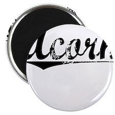 Acorn, Vintage Magnet