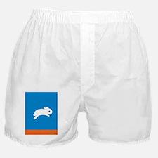 HappyFeet copy Boxer Shorts