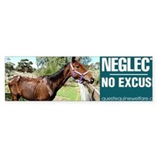Horse Neglect - No Excuse Bumper Sticker