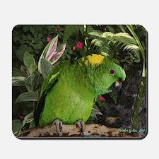 Yellow Nape Amazon Parrot Mousepad