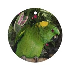 Yellow Nape Amazon Parrot Round Ornament