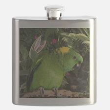 Yellow Nape Amazon Parrot Flask