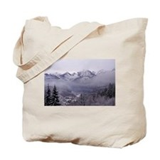 Cute Neuschwanstein castle Tote Bag