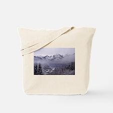 Unique Neuschwanstein castle Tote Bag