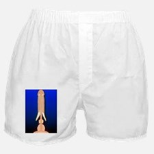 p6080071 Boxer Shorts