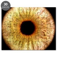 Computer-enhanced green iris of the eye Puzzle