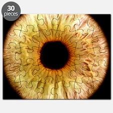 Computer-enhanced green iris of the eye Puzzle