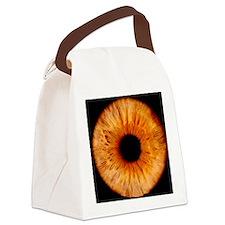 Computer-enhanced brown iris of t Canvas Lunch Bag