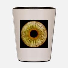 Computer-enhanced green/grey iris of th Shot Glass