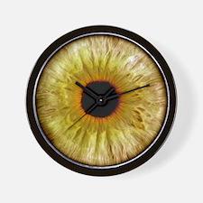 Computer-enhanced green/grey iris of th Wall Clock