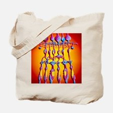 Computer artwork of the structure of the  Tote Bag