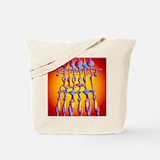 p4240092 Tote Bag