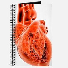 Computer artwork of the heart Journal