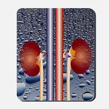 Computer graphic of kidneys (waterdrop b Mousepad