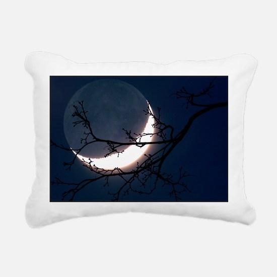 r3400823 Rectangular Canvas Pillow