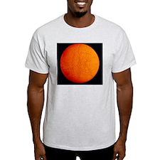 Computer simulation of solar oscilla T-Shirt