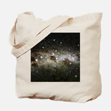 r5500532 Tote Bag