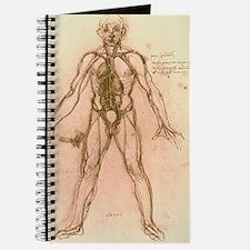 Drawing of human venous system (Leonardo d Journal