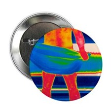 """Drying off, thermogram 2.25"""" Button"""