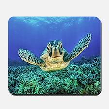 aquatic sea turtle Mousepad