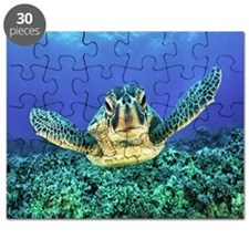 aquatic sea turtle Puzzle