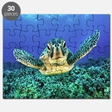 aquatic sea turtle Puzzle