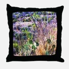 saguaro natl monument desert Throw Pillow