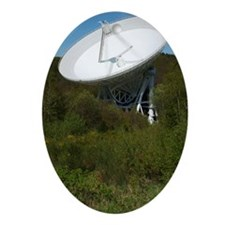 Effelsberg radio telescope Oval Ornament