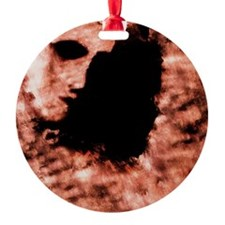 Face on Mars Ornament