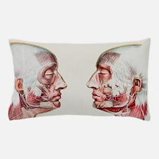 n2490051 Pillow Case