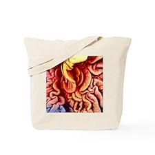 p6160320 Tote Bag
