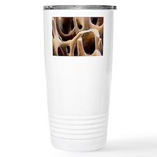 p1050069 Travel Coffee Mug