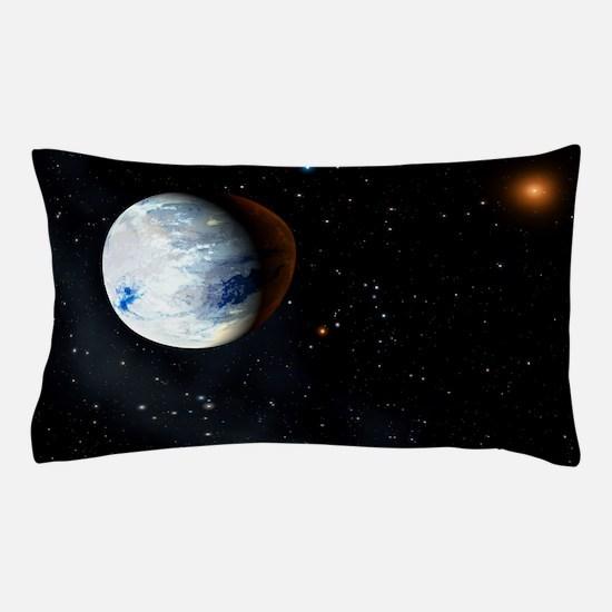 r6500140 Pillow Case