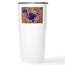 p6080026 Travel Mug