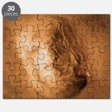 Face on Mars Puzzle