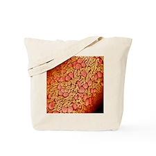p6160322 Tote Bag