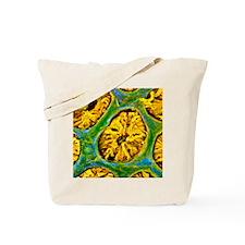 p5600029 Tote Bag