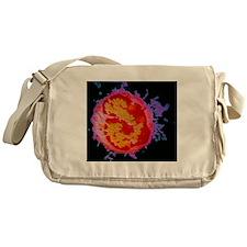 p2480060 Messenger Bag