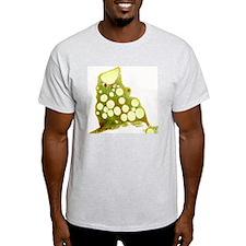 p7600096 T-Shirt