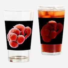 p6800233 Drinking Glass