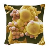 Cell biology adipose Throw Pillows