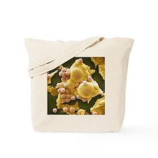 Fat cells, SEM Tote Bag