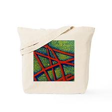 False-colour TEM of collagen fibrils Tote Bag