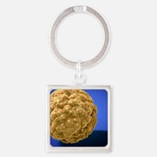 Fat cell Square Keychain