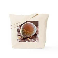 Fat cell, SEM Tote Bag