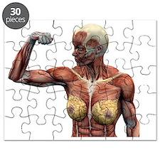 p1500171 Puzzle