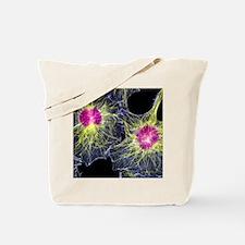 p7800110 Tote Bag