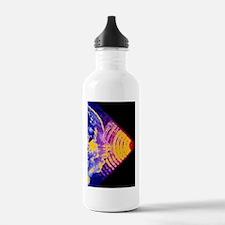 p6800291 Water Bottle